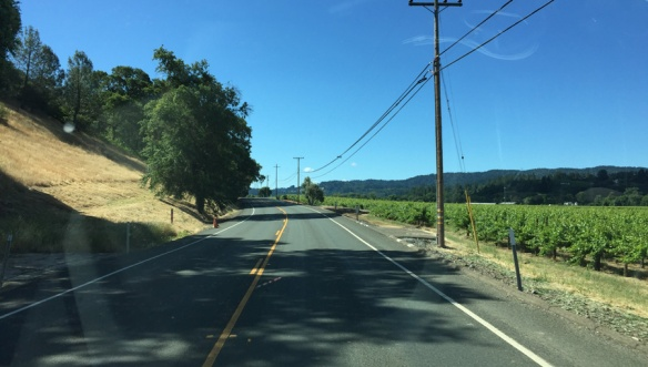 DriveThruVineyards