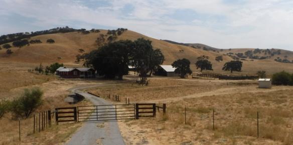 DSCF2509-Farm