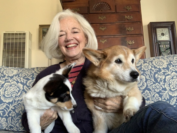 Mary Mitchell with corgis Annie and Abigail